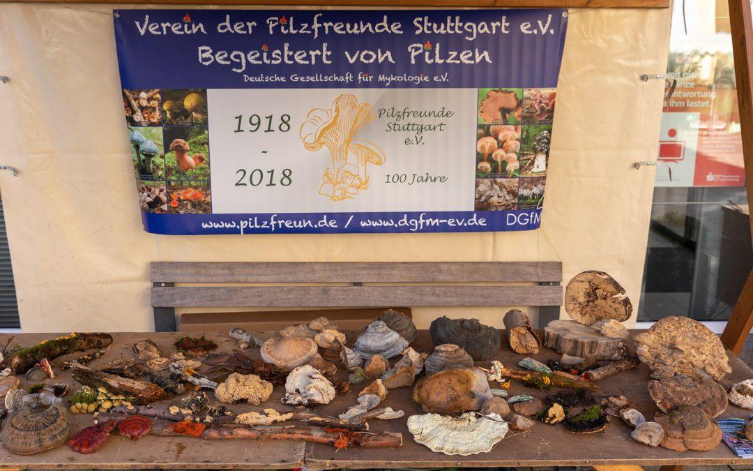 Ausstellung Hornberg 2019